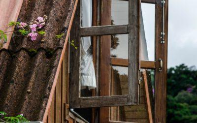 Sigrun live: una finestra sul mondo per ispirazione e confronto